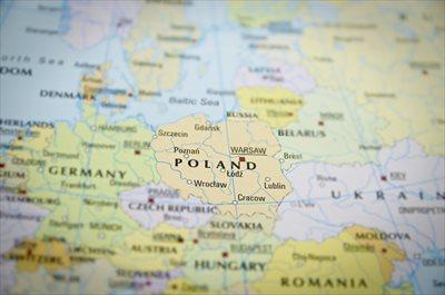 ポーランドが発祥!チーズケーキの歴史